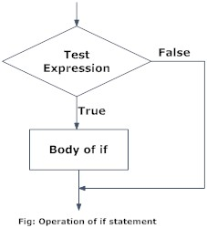 Flowchart of if in R Programming